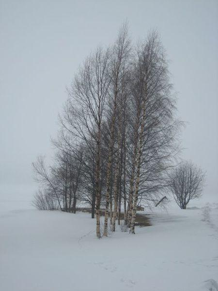 Luleå, la plage